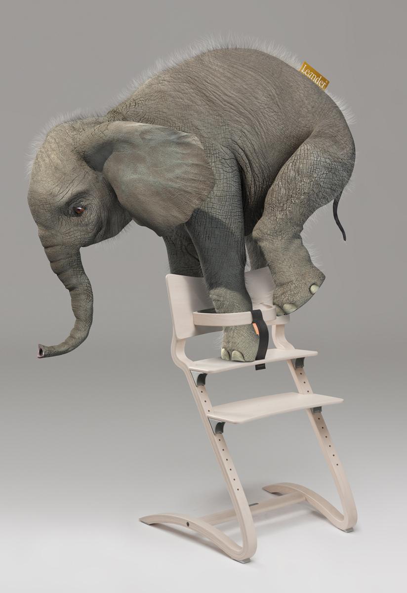 ElefantHires_07