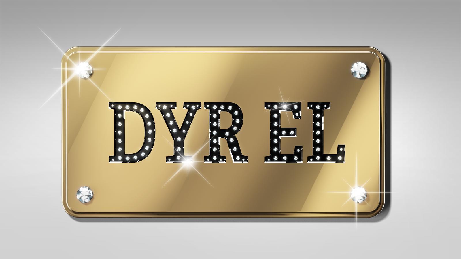 DyrEl02